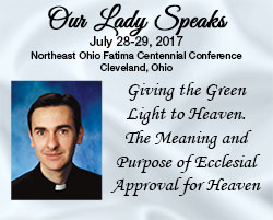 Giving the Green Light to Heaven. The Meaning and Purpose of Ecclesial Approval for Heaven.